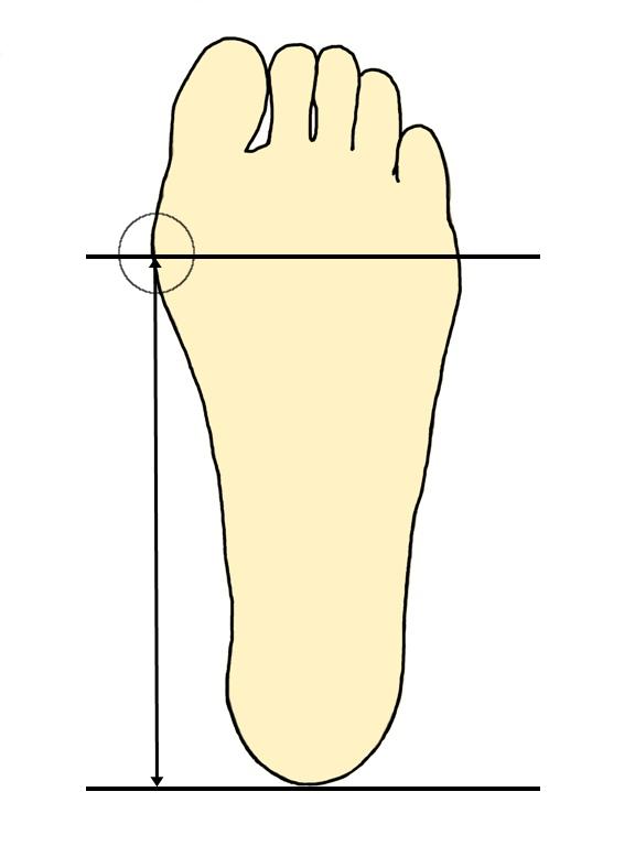 足裏内側縦アーチの測り方